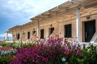flowers dimitra rooms outdoor maragas