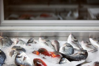 fresh fish manolis tavern