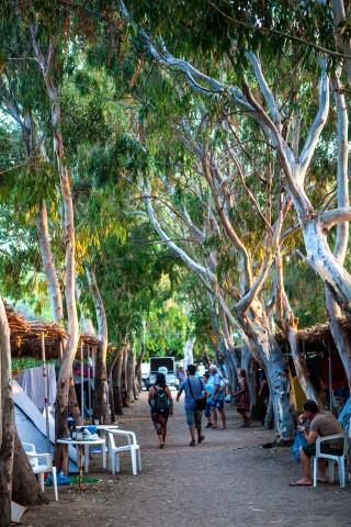 willows maragas camping naxos