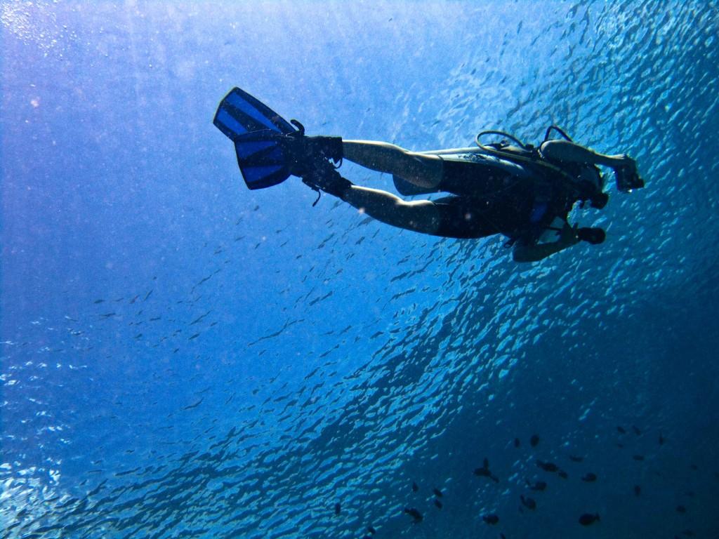 naxos-diving